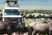 Road Safaris from Nairobi Option 2